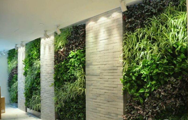 室内绿化装饰与设计_室内墙体绿化_室内立体绿化